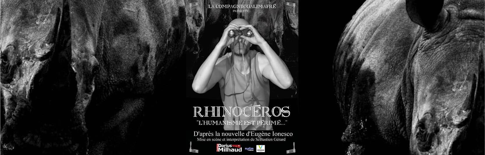 Visuel go rhinoceros